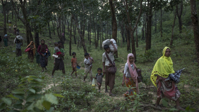 Bangladeshi forests stripped bare as Rohingya refugees battle to survive