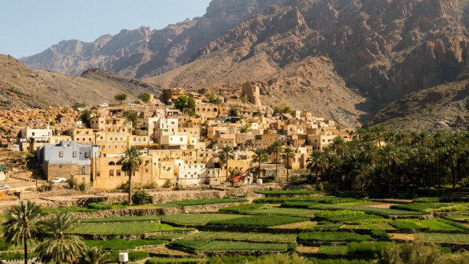 A green future: Oman blazes a trail for environmentalism in the Arab world