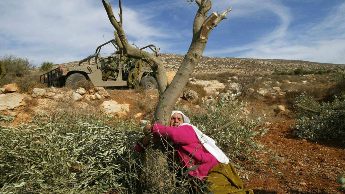 How Israel is uprooting West Bank's future